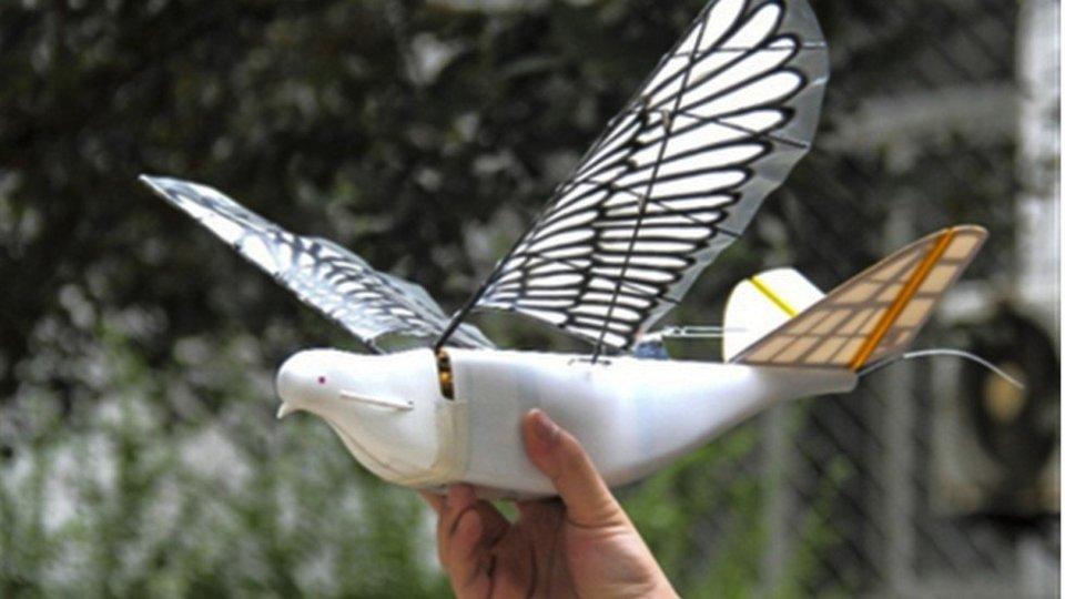 Drone Burung