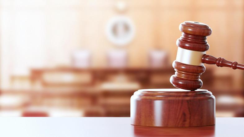 Keputusan oleh panel tujuh hakim datang setelah seorang warga Austria diidentifikasi sebagai Nyona S. mengadakan dua seminar pada tahun 2009 di mana dia menghina Nabi Muhammad
